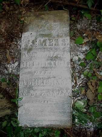 FRENCH, JAMES S. - Meigs County, Ohio   JAMES S. FRENCH - Ohio Gravestone Photos