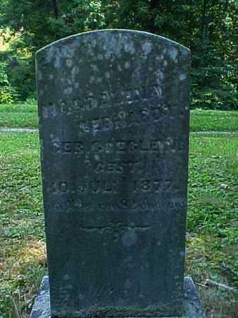 GOEGLEIN GEBHARDT, MAGDALENA - Meigs County, Ohio   MAGDALENA GOEGLEIN GEBHARDT - Ohio Gravestone Photos