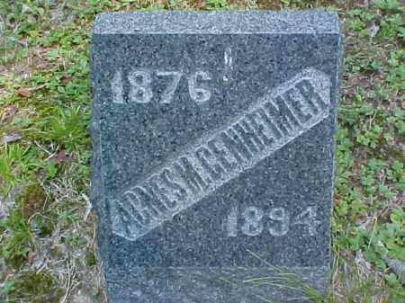 GENHEIMER, AGNES M. - Meigs County, Ohio | AGNES M. GENHEIMER - Ohio Gravestone Photos