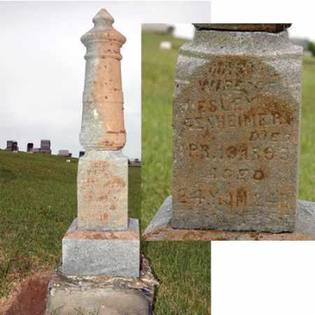 GENHEIMER, MARY - Meigs County, Ohio | MARY GENHEIMER - Ohio Gravestone Photos
