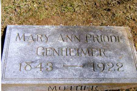 GENHEIMER, MARY ANN - Meigs County, Ohio | MARY ANN GENHEIMER - Ohio Gravestone Photos