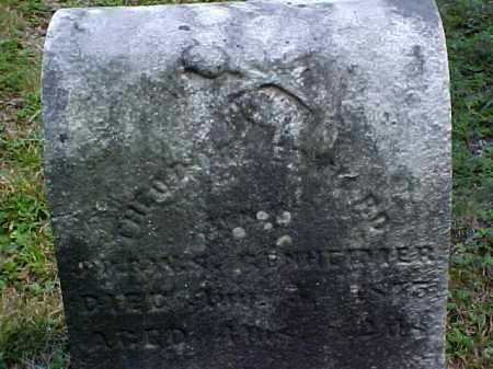 GENHEIMER, THEODORE EDWARD - Meigs County, Ohio | THEODORE EDWARD GENHEIMER - Ohio Gravestone Photos