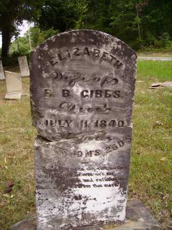 SIMS GIBBS, ELIZABETH - Meigs County, Ohio | ELIZABETH SIMS GIBBS - Ohio Gravestone Photos