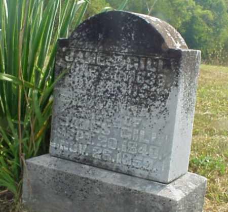 DOWELL GILL, ROSANNA - Meigs County, Ohio | ROSANNA DOWELL GILL - Ohio Gravestone Photos