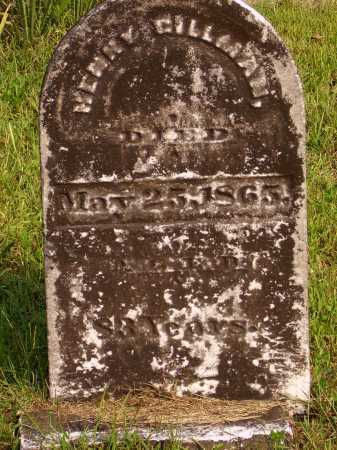 GILLMAN, HENRY - Meigs County, Ohio | HENRY GILLMAN - Ohio Gravestone Photos