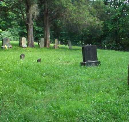 GILMORE, ELIZABETH - Meigs County, Ohio | ELIZABETH GILMORE - Ohio Gravestone Photos