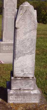 GODDARD, CYRUS - OVERALL VIEW - Meigs County, Ohio | CYRUS - OVERALL VIEW GODDARD - Ohio Gravestone Photos