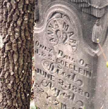 GOEGLEIN, ANNA MARY - Meigs County, Ohio   ANNA MARY GOEGLEIN - Ohio Gravestone Photos