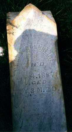 GONNHEIMER, HENRY - Meigs County, Ohio | HENRY GONNHEIMER - Ohio Gravestone Photos