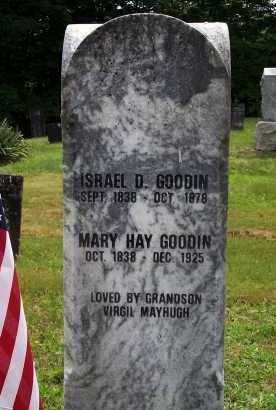 GOODIN, ISRAEL DALLAS - Meigs County, Ohio | ISRAEL DALLAS GOODIN - Ohio Gravestone Photos