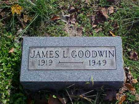 GOODWIN, JAMES L. - Meigs County, Ohio | JAMES L. GOODWIN - Ohio Gravestone Photos