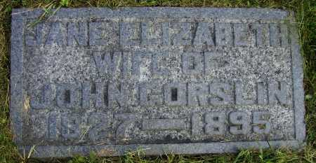 GORSLIN, JANE ELIZABETH - Meigs County, Ohio | JANE ELIZABETH GORSLIN - Ohio Gravestone Photos