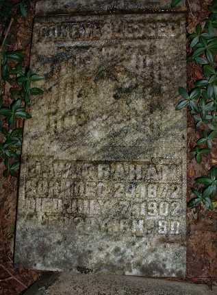 GRAHAM, J. W. - Meigs County, Ohio | J. W. GRAHAM - Ohio Gravestone Photos