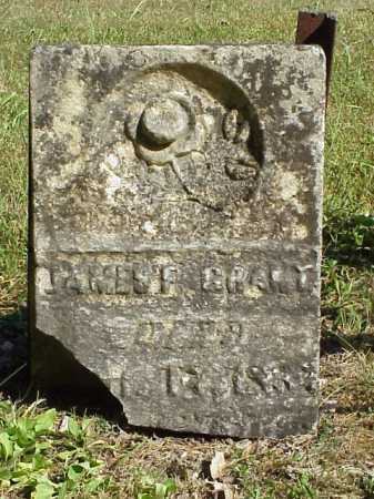 GRANT, JAMES F. - Meigs County, Ohio | JAMES F. GRANT - Ohio Gravestone Photos