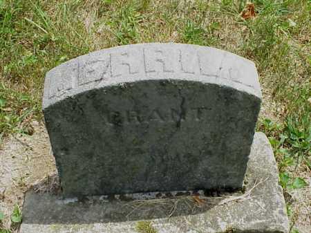 GRANT, MERRILL - Meigs County, Ohio | MERRILL GRANT - Ohio Gravestone Photos