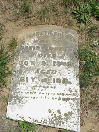 FOLDEN GRAPES, ELIZABETH - Meigs County, Ohio | ELIZABETH FOLDEN GRAPES - Ohio Gravestone Photos