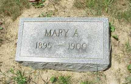 GRAPES, MARY A. - Meigs County, Ohio | MARY A. GRAPES - Ohio Gravestone Photos