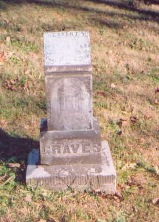 GRAVES, HERBERT - Meigs County, Ohio | HERBERT GRAVES - Ohio Gravestone Photos