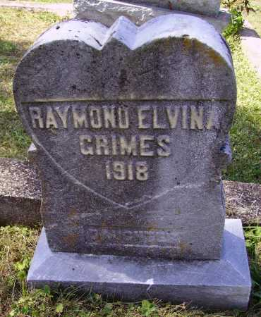 GRIMES, RAYMOND ELVINA - Meigs County, Ohio | RAYMOND ELVINA GRIMES - Ohio Gravestone Photos
