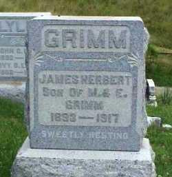 GRIMM, JAMES HERBERT - Meigs County, Ohio | JAMES HERBERT GRIMM - Ohio Gravestone Photos