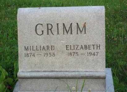 GRIMM, MILLIARD - Meigs County, Ohio | MILLIARD GRIMM - Ohio Gravestone Photos