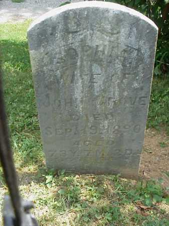 GROVES, SOPHIA - Meigs County, Ohio   SOPHIA GROVES - Ohio Gravestone Photos