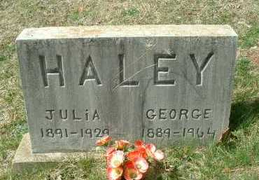 HALEY, JULIA - Meigs County, Ohio | JULIA HALEY - Ohio Gravestone Photos