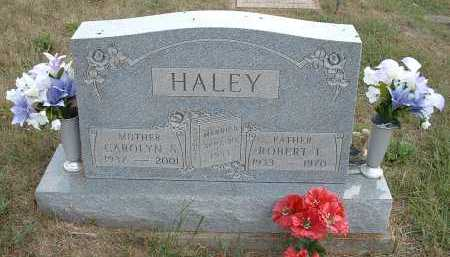 HALEY, CAROLYN S. - Meigs County, Ohio | CAROLYN S. HALEY - Ohio Gravestone Photos