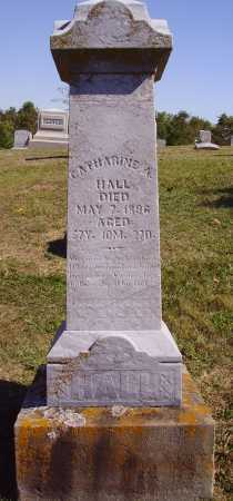 HALL, CATHARINE A. - OVERALL VIEW - Meigs County, Ohio | CATHARINE A. - OVERALL VIEW HALL - Ohio Gravestone Photos