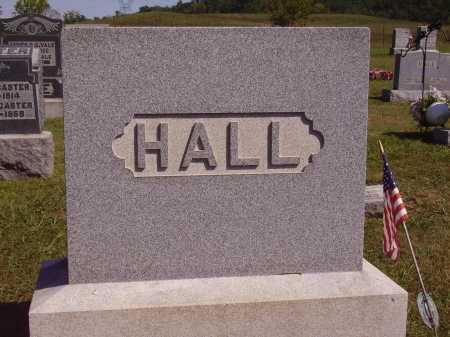 HALL FAMILY, MONUMENT - Meigs County, Ohio | MONUMENT HALL FAMILY - Ohio Gravestone Photos