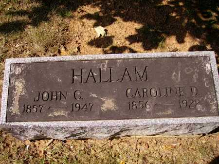 HALLAM, JOHN C. - Meigs County, Ohio | JOHN C. HALLAM - Ohio Gravestone Photos