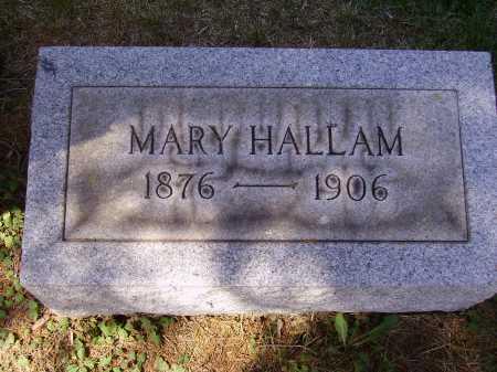 HALLAM, MARY - Meigs County, Ohio   MARY HALLAM - Ohio Gravestone Photos