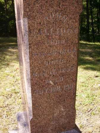 HALLIDAY, JOHN - CLOSE VIEW - Meigs County, Ohio | JOHN - CLOSE VIEW HALLIDAY - Ohio Gravestone Photos