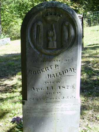 HALLIDAY, ROBERT P. - OVERALL VIEW - Meigs County, Ohio | ROBERT P. - OVERALL VIEW HALLIDAY - Ohio Gravestone Photos