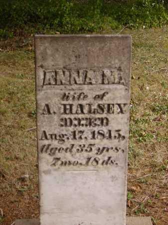 HALSEY, ANNA M. - Meigs County, Ohio   ANNA M. HALSEY - Ohio Gravestone Photos