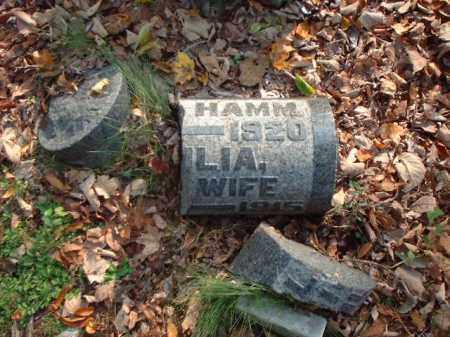 OHLINGER HAMM, JULIA - Meigs County, Ohio | JULIA OHLINGER HAMM - Ohio Gravestone Photos