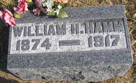 HAMM, WILLIAM HENRY - Meigs County, Ohio | WILLIAM HENRY HAMM - Ohio Gravestone Photos