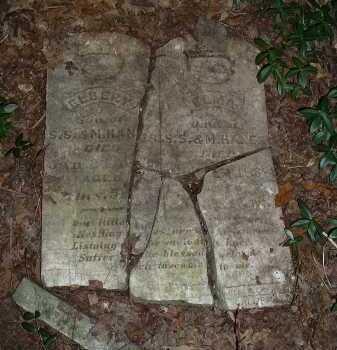 HANES, ELMA - Meigs County, Ohio   ELMA HANES - Ohio Gravestone Photos