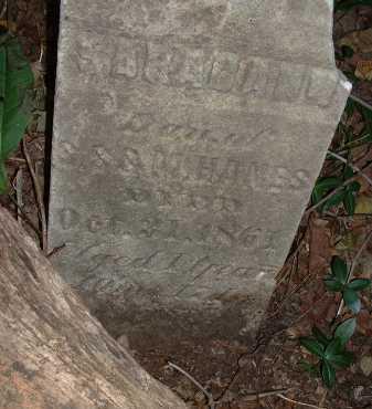 HANES, SARAH ANN - Meigs County, Ohio | SARAH ANN HANES - Ohio Gravestone Photos