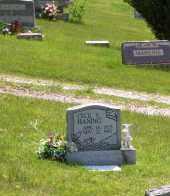 HANING, CECIL EUGENE - Meigs County, Ohio | CECIL EUGENE HANING - Ohio Gravestone Photos