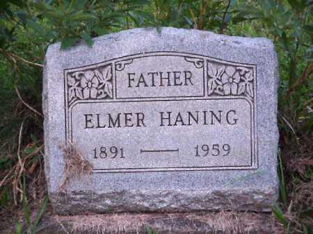 HANING, ELMER - Meigs County, Ohio | ELMER HANING - Ohio Gravestone Photos