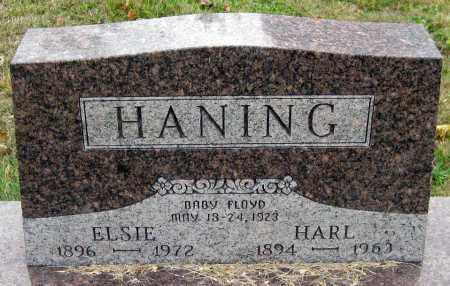 HANING, FLOYD - Meigs County, Ohio | FLOYD HANING - Ohio Gravestone Photos