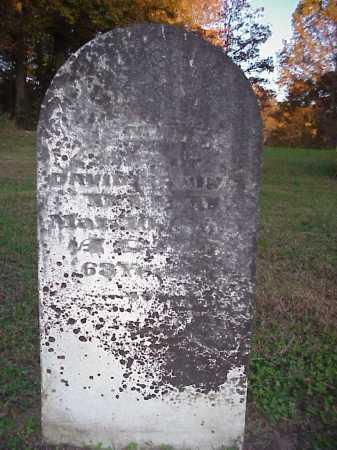 HANING, JEMINA - Meigs County, Ohio | JEMINA HANING - Ohio Gravestone Photos