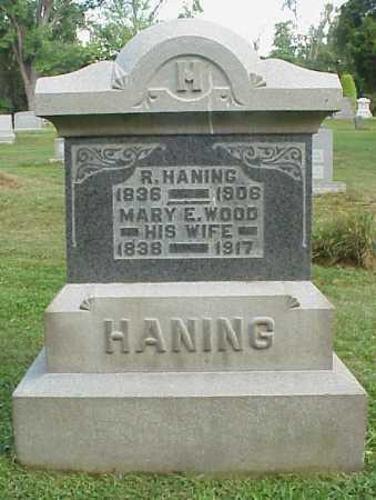 HANING, MARY E. - Meigs County, Ohio   MARY E. HANING - Ohio Gravestone Photos
