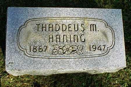 HANING, THADDEUS M. - Meigs County, Ohio | THADDEUS M. HANING - Ohio Gravestone Photos