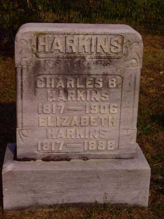 HARKINS, ELIZABETH - Meigs County, Ohio | ELIZABETH HARKINS - Ohio Gravestone Photos