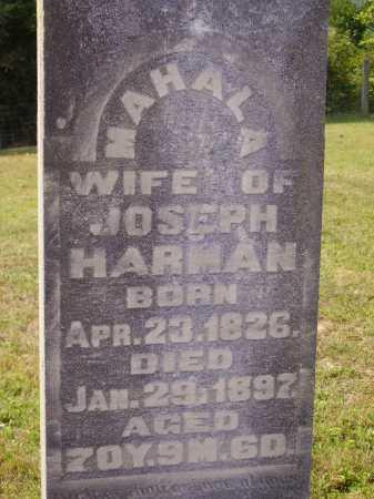 HARMAN, JOSEPH J. - Meigs County, Ohio   JOSEPH J. HARMAN - Ohio Gravestone Photos