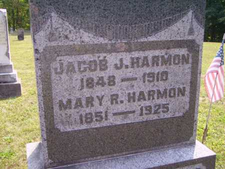 HARMON, MARY R. - Meigs County, Ohio | MARY R. HARMON - Ohio Gravestone Photos