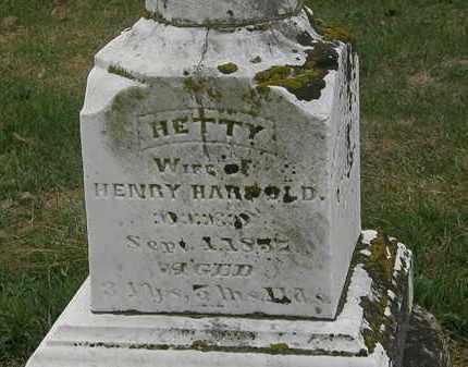 HARPOLD, HETTY - Meigs County, Ohio | HETTY HARPOLD - Ohio Gravestone Photos