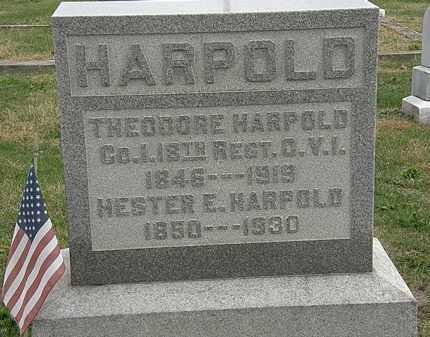 HARPOLD, THEODORE - Meigs County, Ohio | THEODORE HARPOLD - Ohio Gravestone Photos
